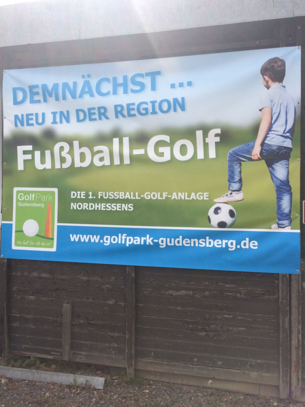 Die L�wen im GolfPark Gudensberg