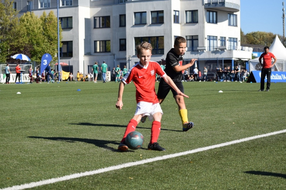 U11 auf Schalke