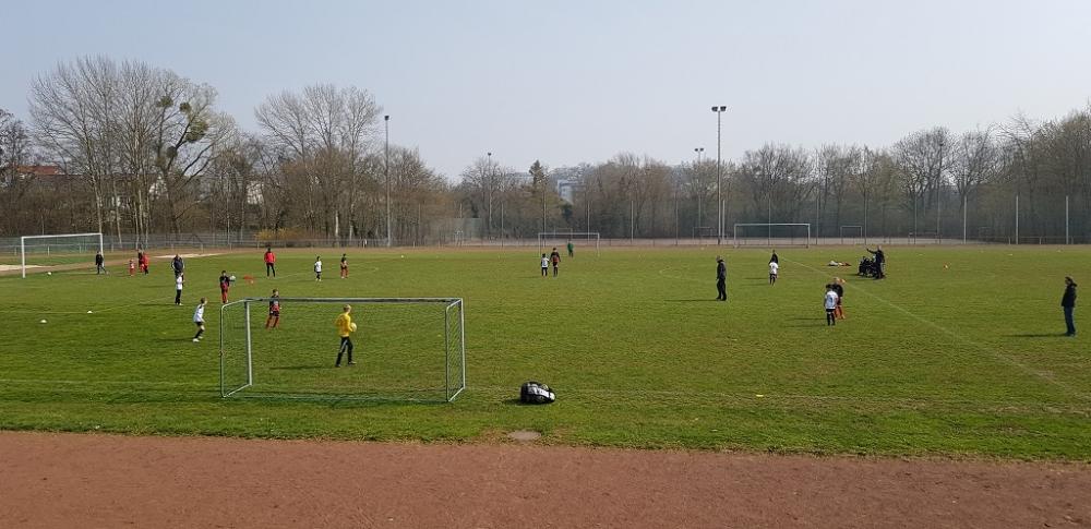 VfL Kassel - U11