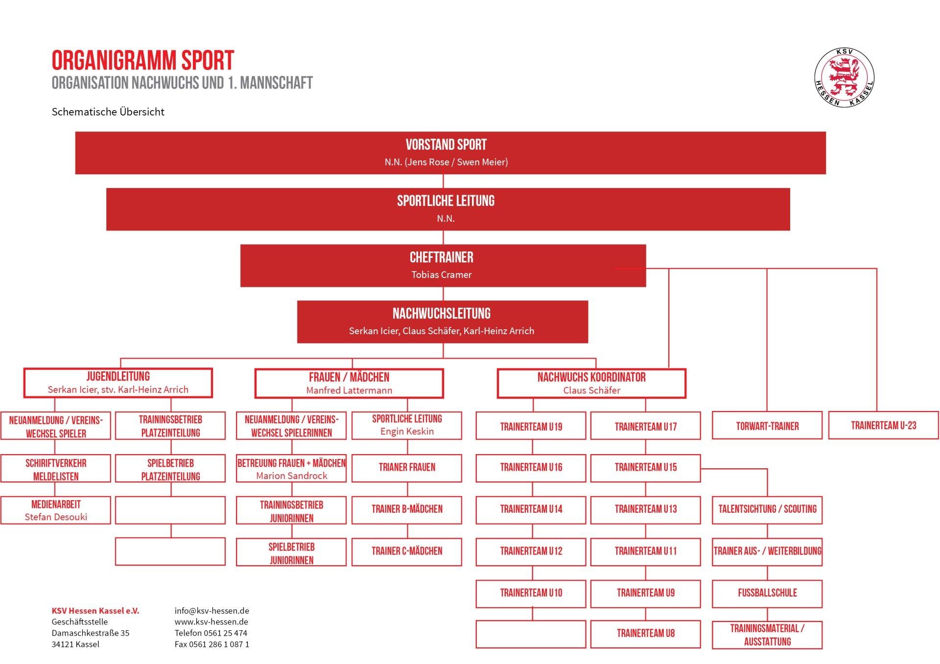Organigramm im Bereich Sport